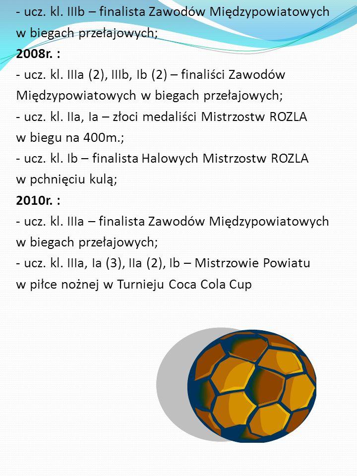 - ucz. kl. IIIb – finalista Zawodów Międzypowiatowych w biegach przełajowych; 2008r.