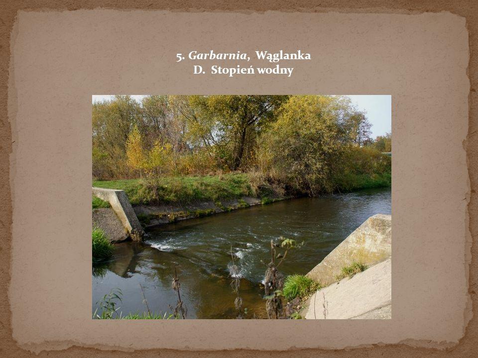 5. Garbarnia, Wąglanka D. Stopień wodny