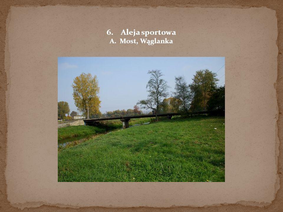 Aleja sportowa A. Most, Wąglanka