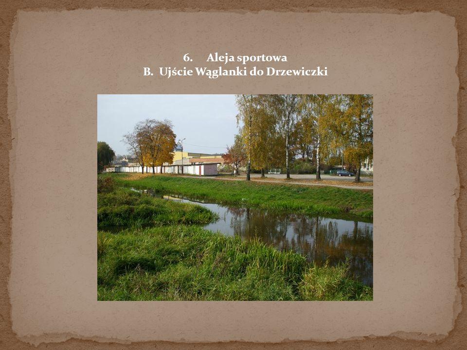 B. Ujście Wąglanki do Drzewiczki