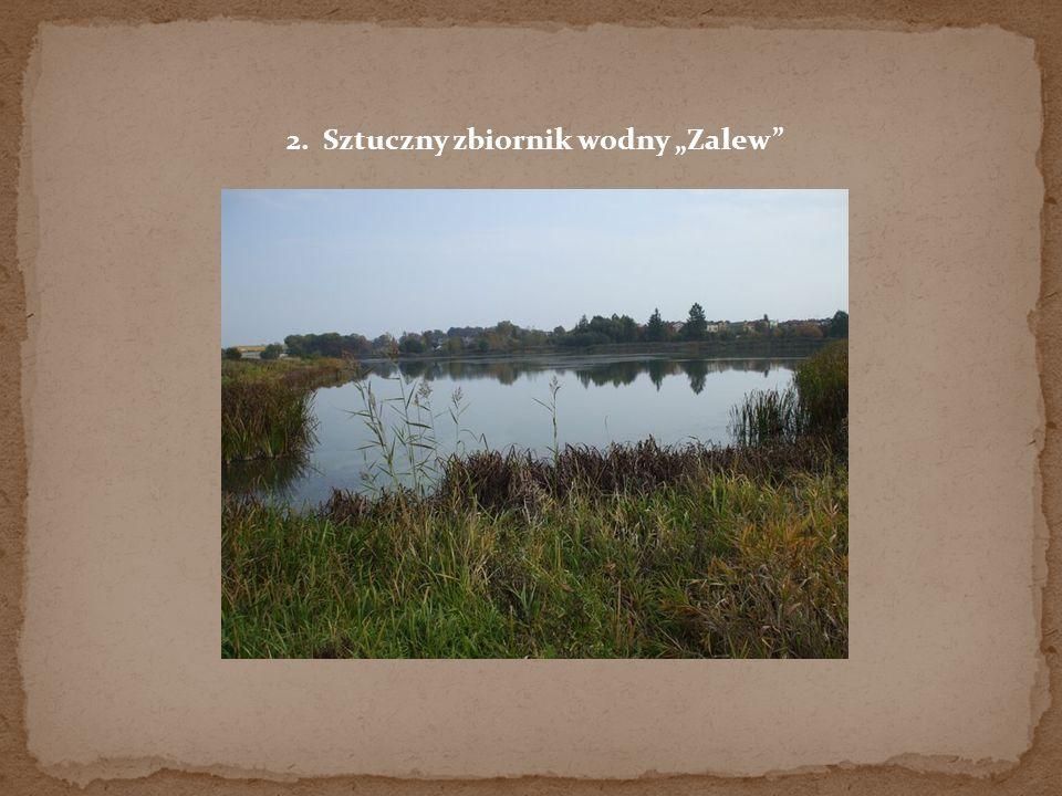 """2. Sztuczny zbiornik wodny """"Zalew"""