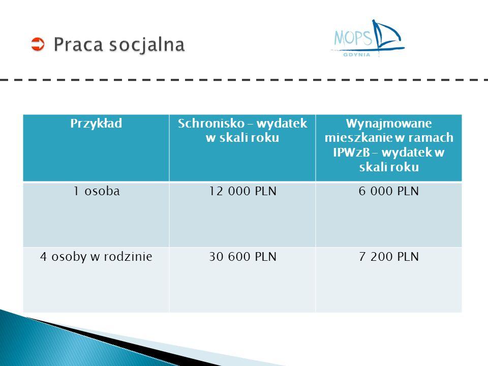 Praca socjalna Przykład Schronisko – wydatek w skali roku