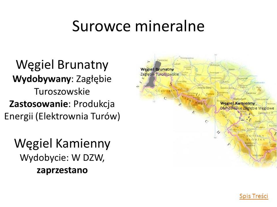 Surowce mineralne Węgiel Brunatny Węgiel Kamienny