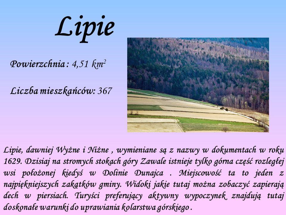 Lipie Powierzchnia : 4,51 km2 Liczba mieszkańców: 367
