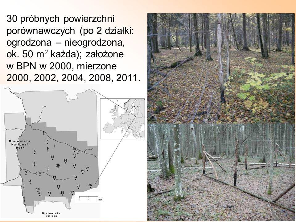 30 próbnych powierzchni porównawczych (po 2 działki: ogrodzona – nieogrodzona, ok. 50 m2 każda); założone.
