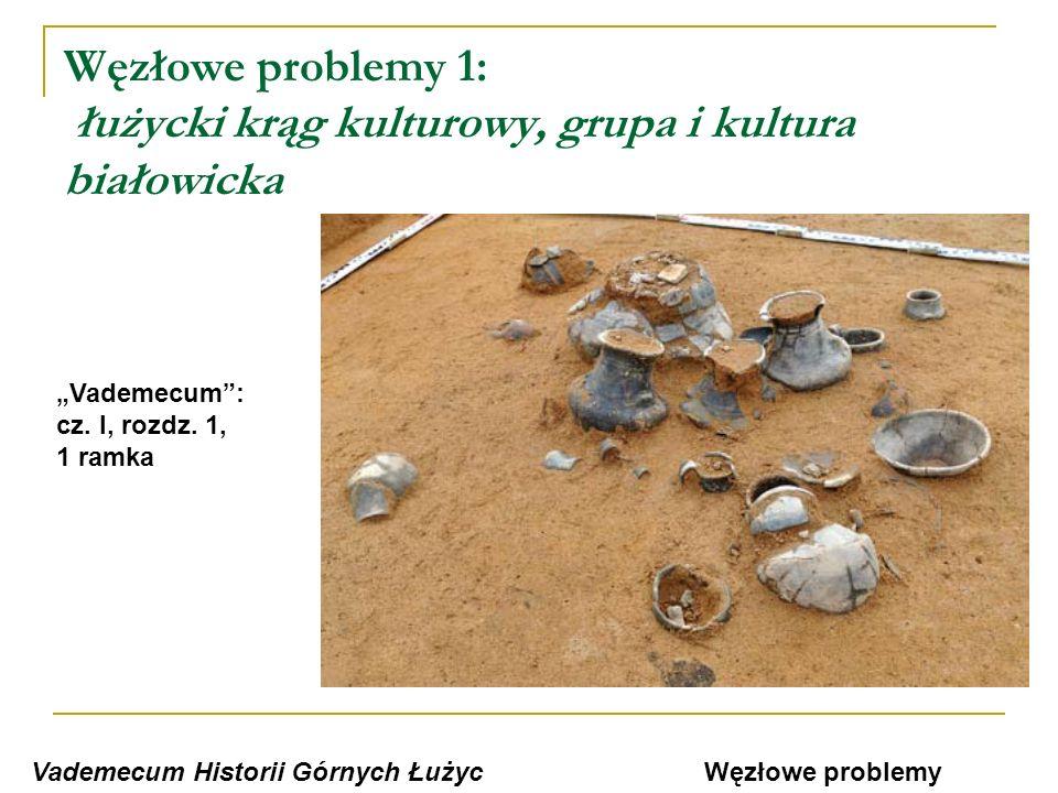 Węzłowe problemy 1: łużycki krąg kulturowy, grupa i kultura białowicka