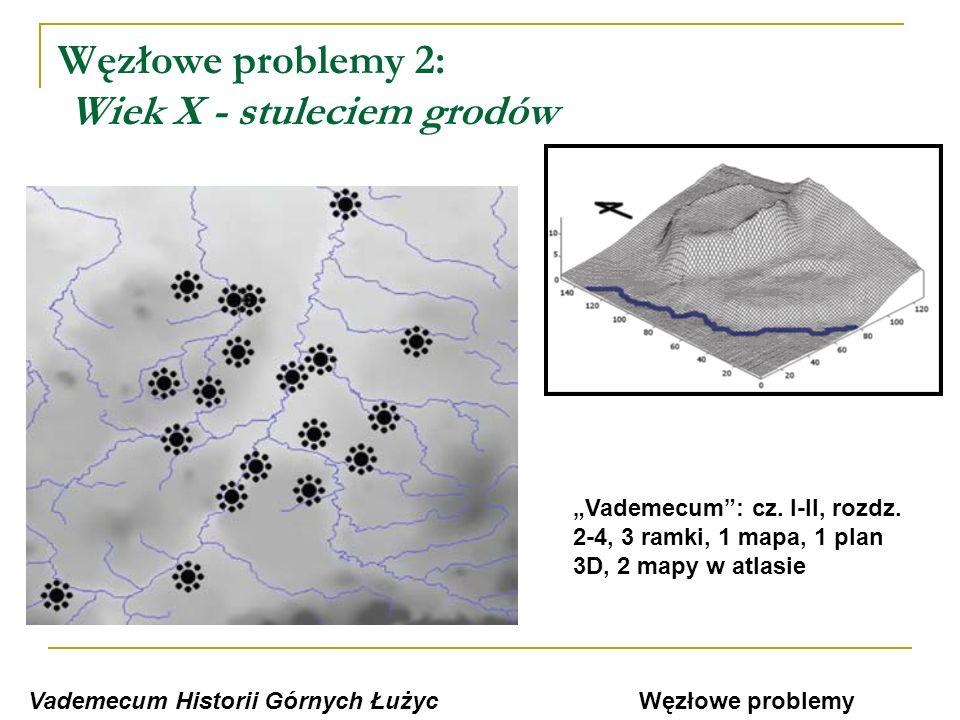 Węzłowe problemy 2: Wiek X - stuleciem grodów