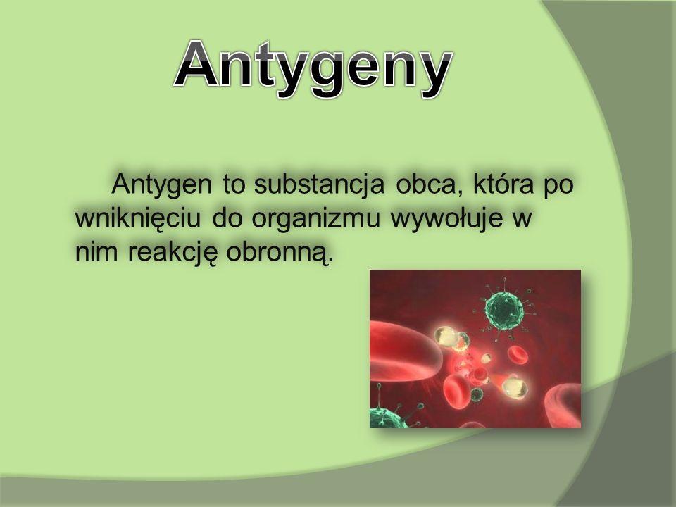 Antygeny Antygen to substancja obca, która po wniknięciu do organizmu wywołuje w nim reakcję obronną.