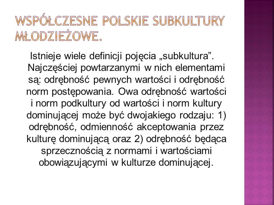 Współczesne polskie subkultury młodzieżowe.