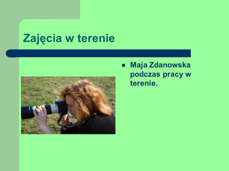Zajęcia w terenie Maja Zdanowska podczas pracy w terenie.