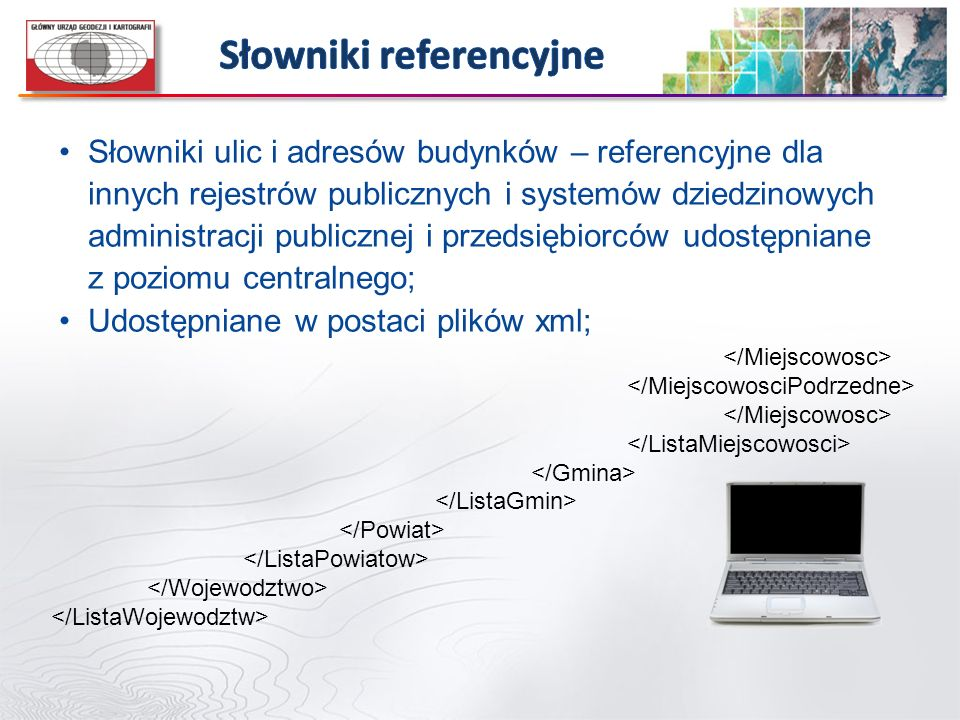 Słowniki referencyjne
