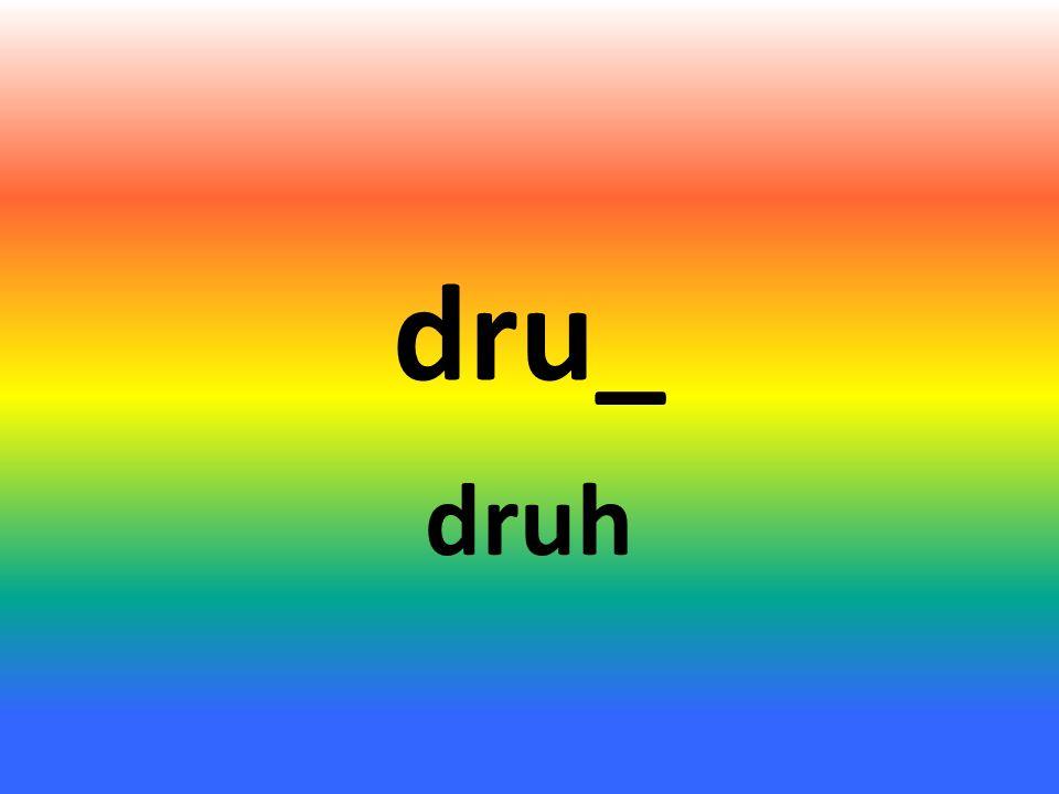 dru_ druh