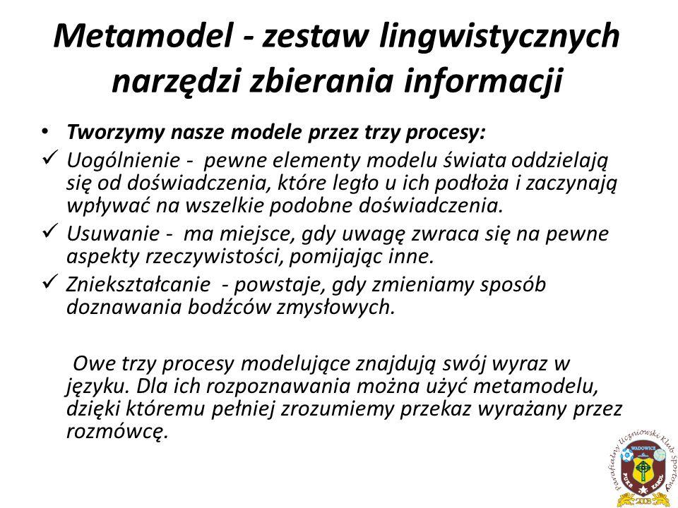 Metamodel - zestaw lingwistycznych narzędzi zbierania informacji
