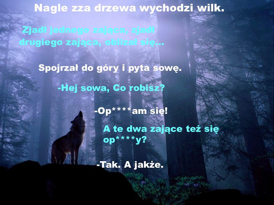 Nagle zza drzewa wychodzi wilk.