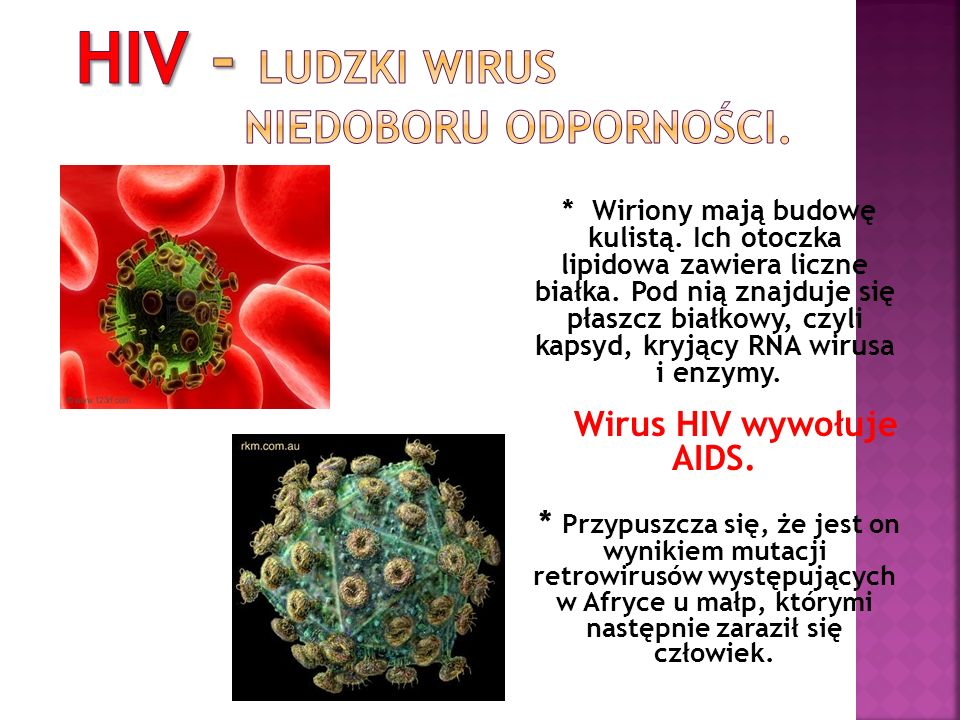 HIV - Ludzki wirus niedoboru odporności.