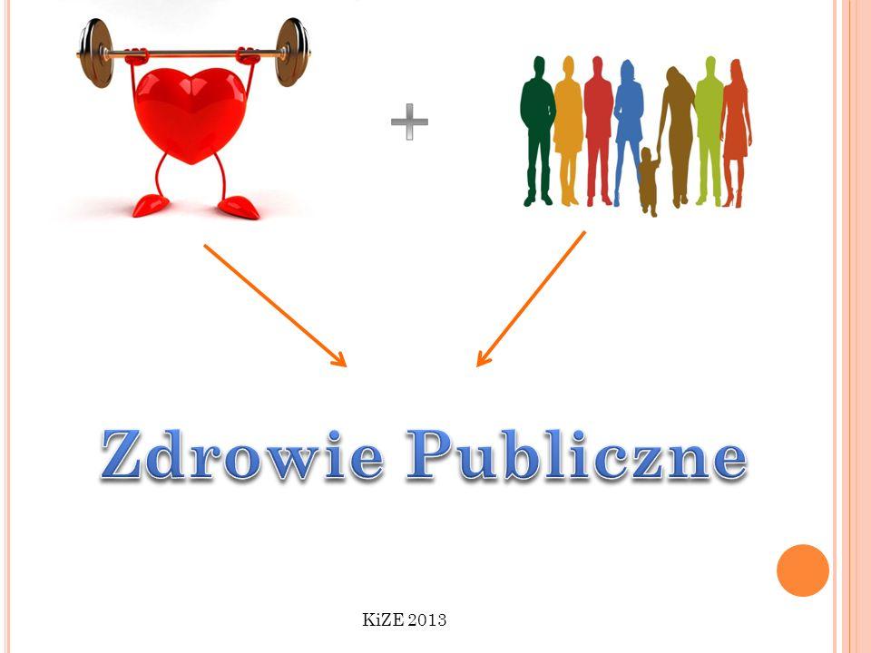 + Zdrowie Publiczne KiZE 2013