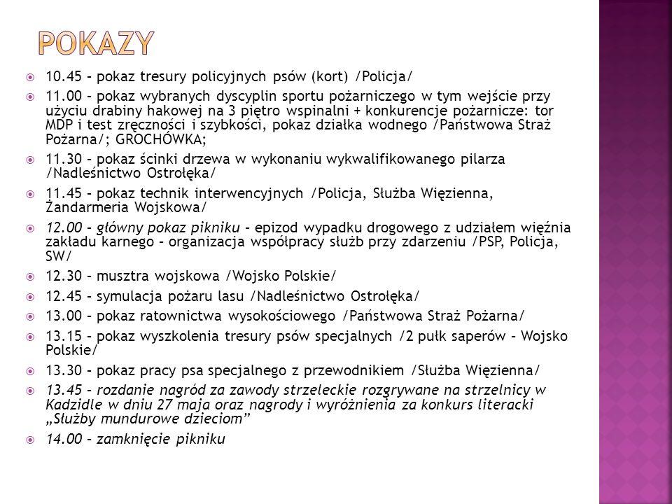 Pokazy 10.45 – pokaz tresury policyjnych psów (kort) /Policja/