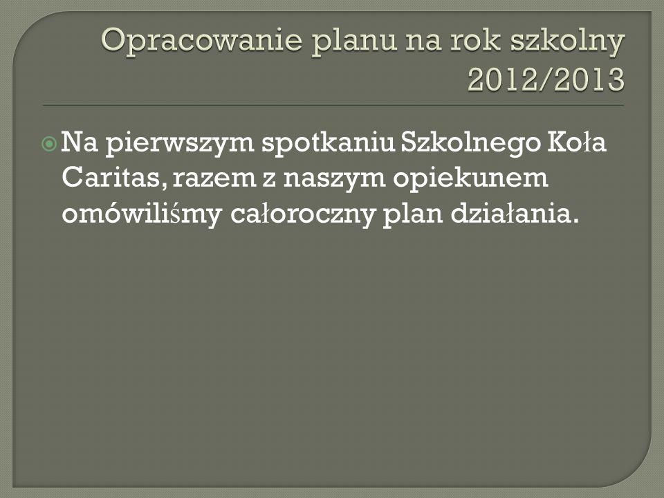 Opracowanie planu na rok szkolny 2012/2013