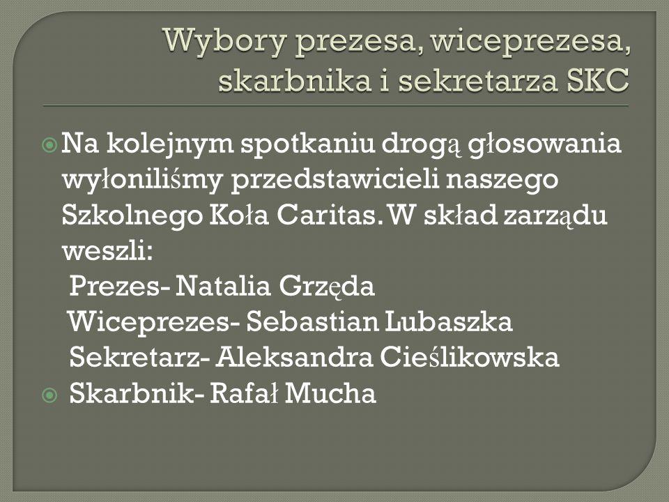 Wybory prezesa, wiceprezesa, skarbnika i sekretarza SKC