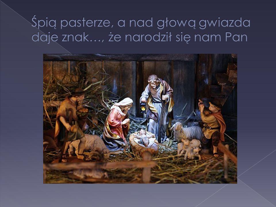 Śpią pasterze, a nad głową gwiazda daje znak…, że narodził się nam Pan