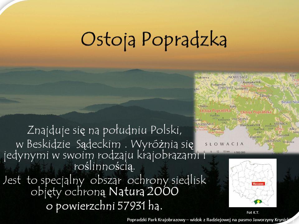Ostoja Popradzka Znajduje się na południu Polski,