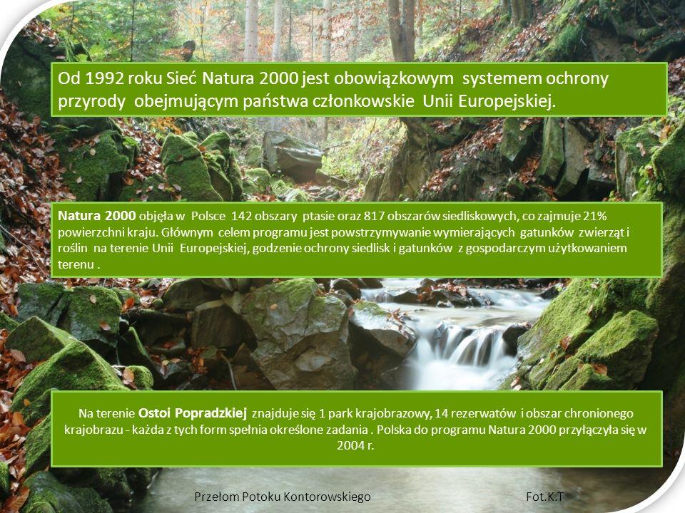 Od 1992 roku Sieć Natura 2000 jest obowiązkowym systemem ochrony przyrody obejmującym państwa członkowskie Unii Europejskiej.