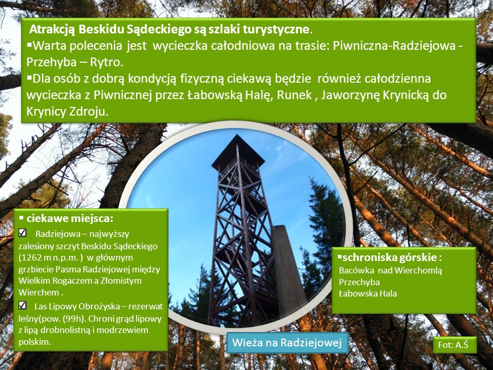 Atrakcją Beskidu Sądeckiego są szlaki turystyczne.