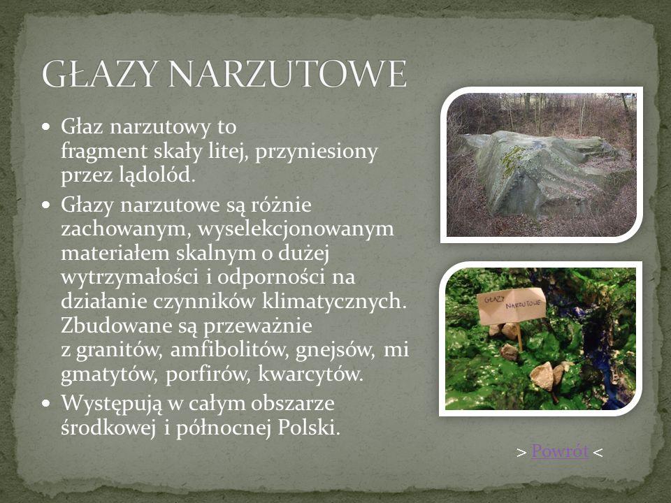 GŁAZY NARZUTOWE Głaz narzutowy to fragment skały litej, przyniesiony przez lądolód.