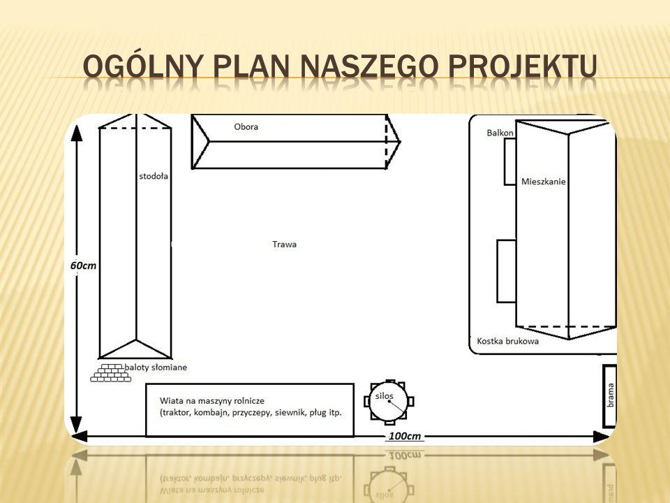 Ogólny plan naszego projektu