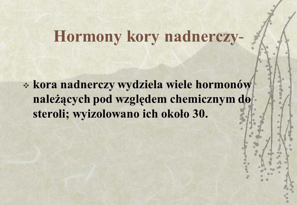 Hormony kory nadnerczy-