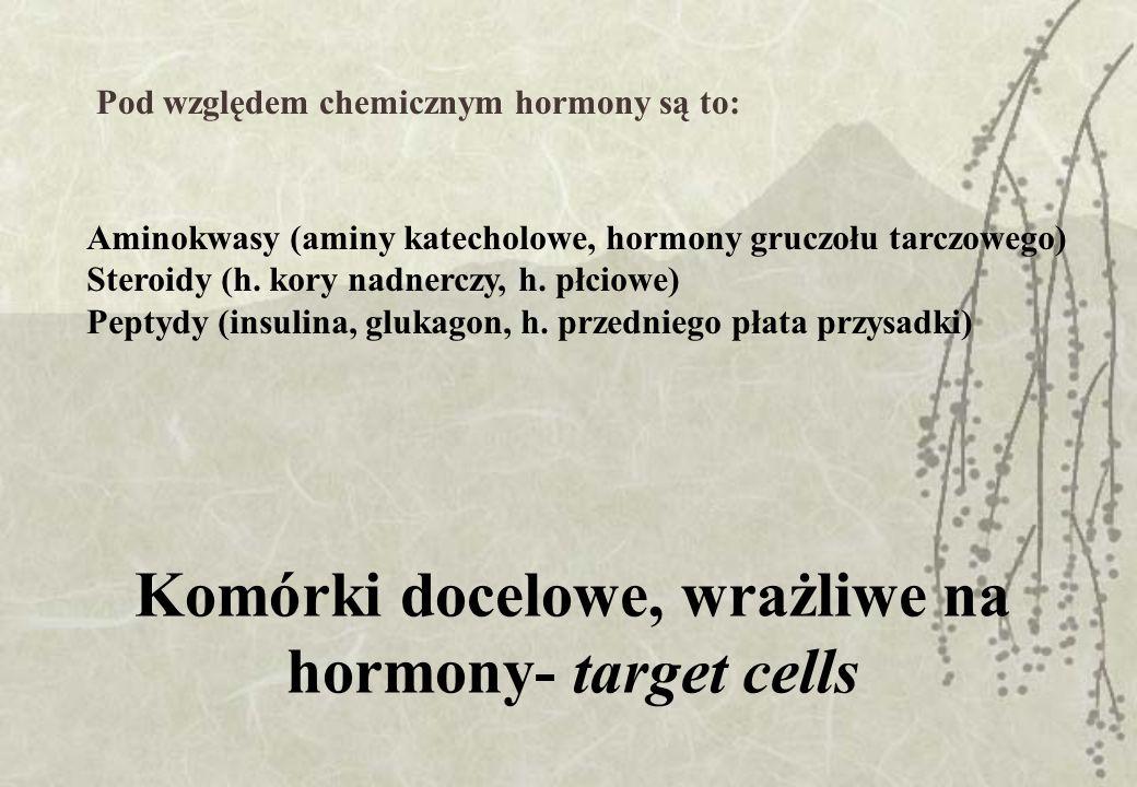 Komórki docelowe, wrażliwe na hormony- target cells