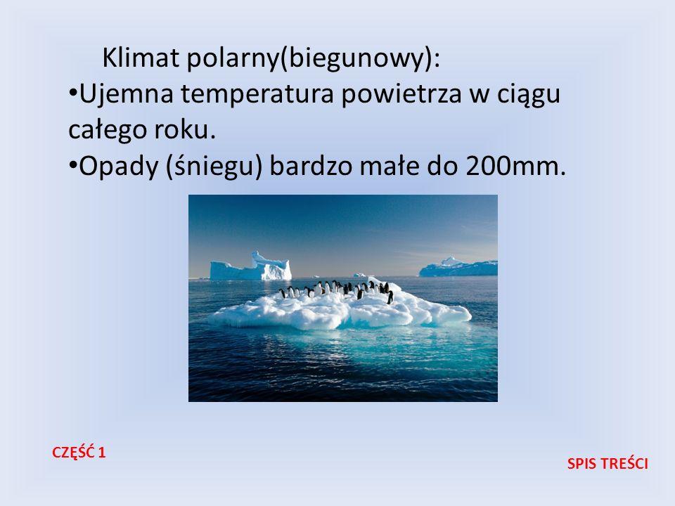 Klimat polarny(biegunowy):