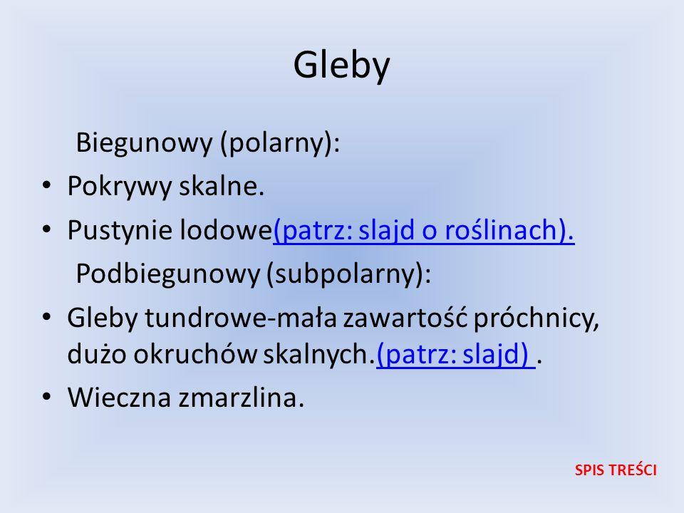 Gleby Biegunowy (polarny): Pokrywy skalne.