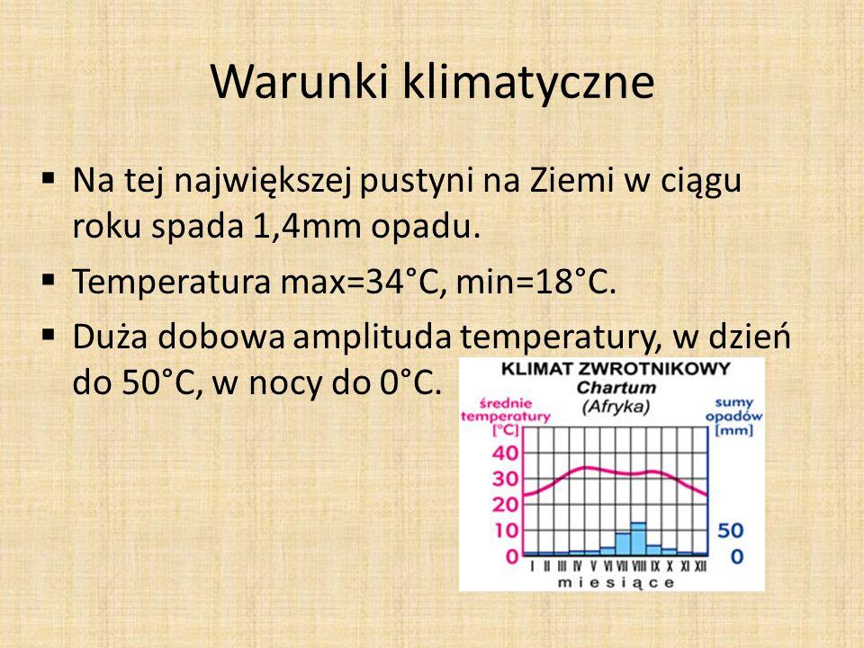 Warunki klimatyczneNa tej największej pustyni na Ziemi w ciągu roku spada 1,4mm opadu. Temperatura max=34°C, min=18°C.