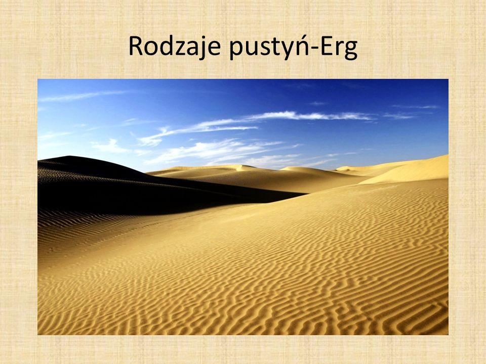 Rodzaje pustyń-Erg