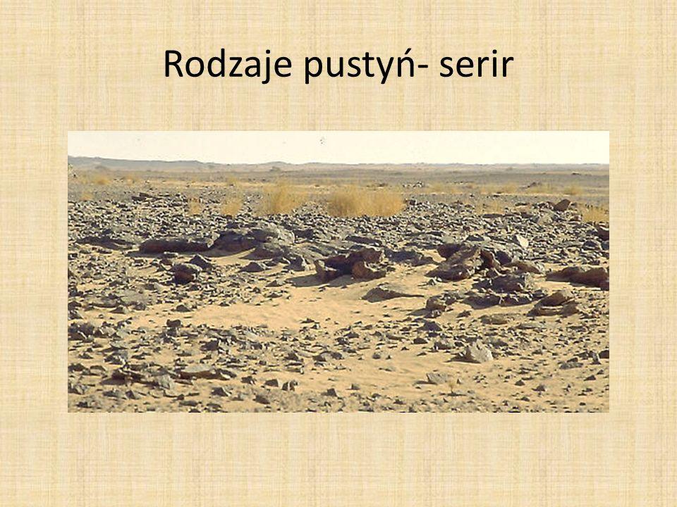 Rodzaje pustyń- serir