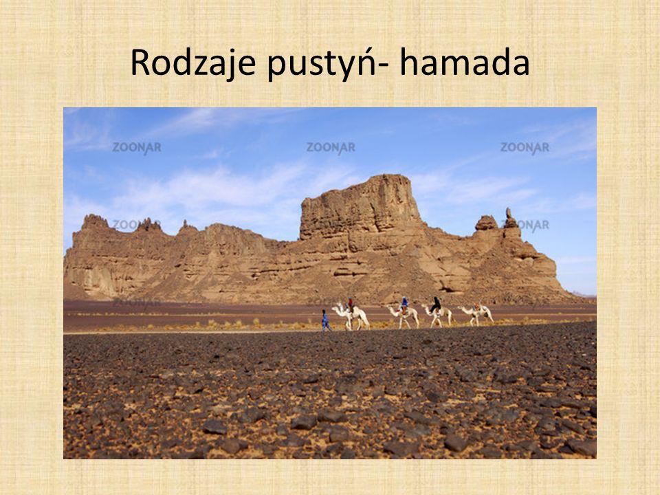 Rodzaje pustyń- hamada