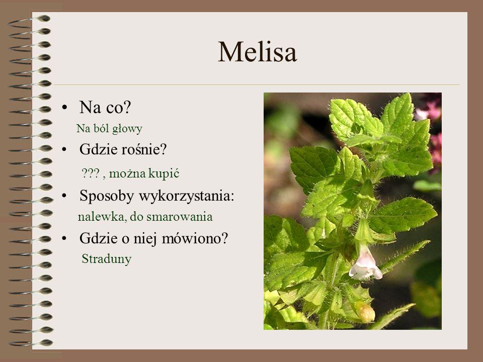 Melisa Na co Gdzie rośnie , można kupić Sposoby wykorzystania: