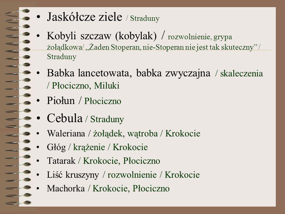 Jaskółcze ziele / Straduny