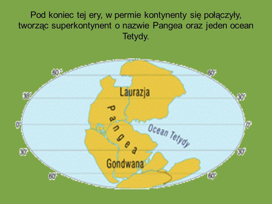 Pod koniec tej ery, w permie kontynenty się połączyły, tworząc superkontynent o nazwie Pangea oraz jeden ocean Tetydy.
