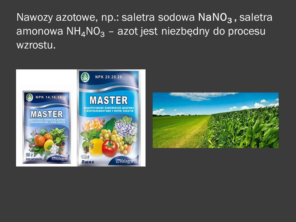 Nawozy azotowe, np.: saletra sodowa NaNO3 , saletra amonowa NH4NO3 – azot jest niezbędny do procesu wzrostu.