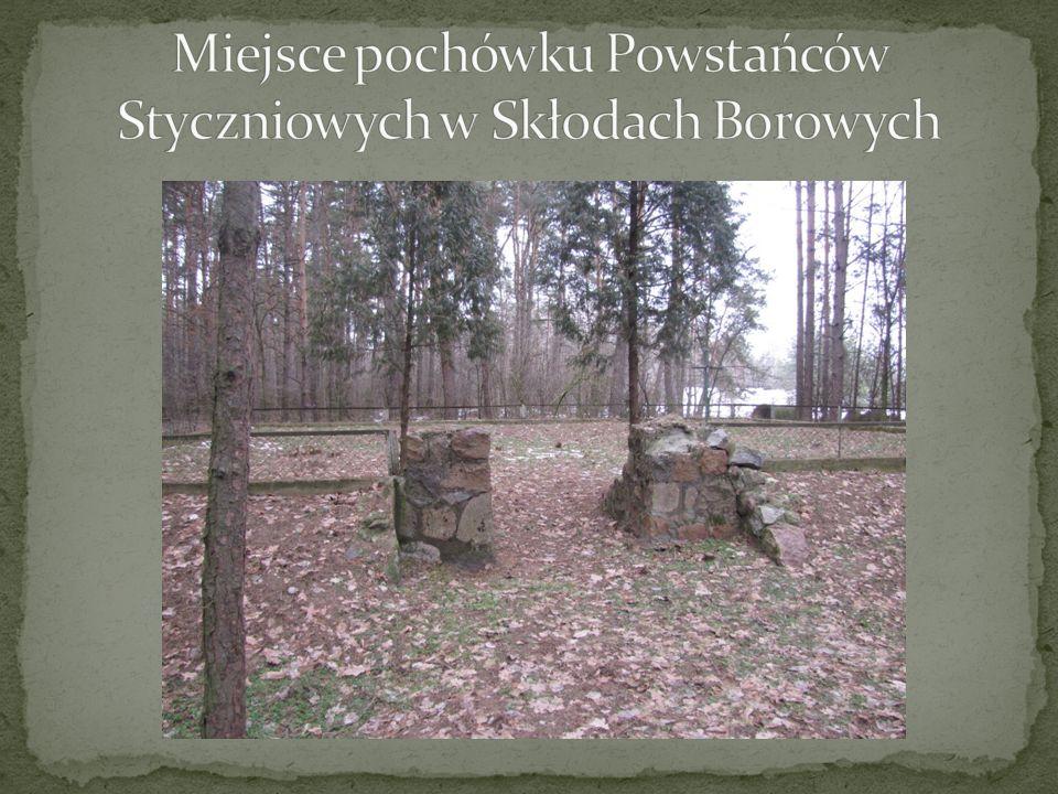 Miejsce pochówku Powstańców Styczniowych w Skłodach Borowych