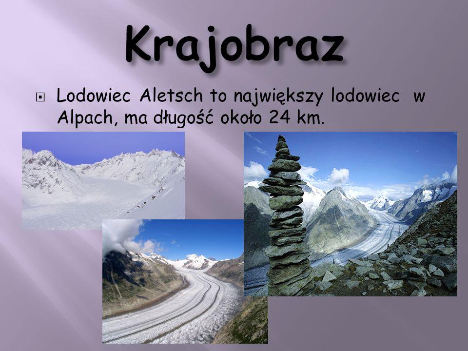 Krajobraz Lodowiec Aletsch to największy lodowiec w Alpach, ma długość około 24 km.