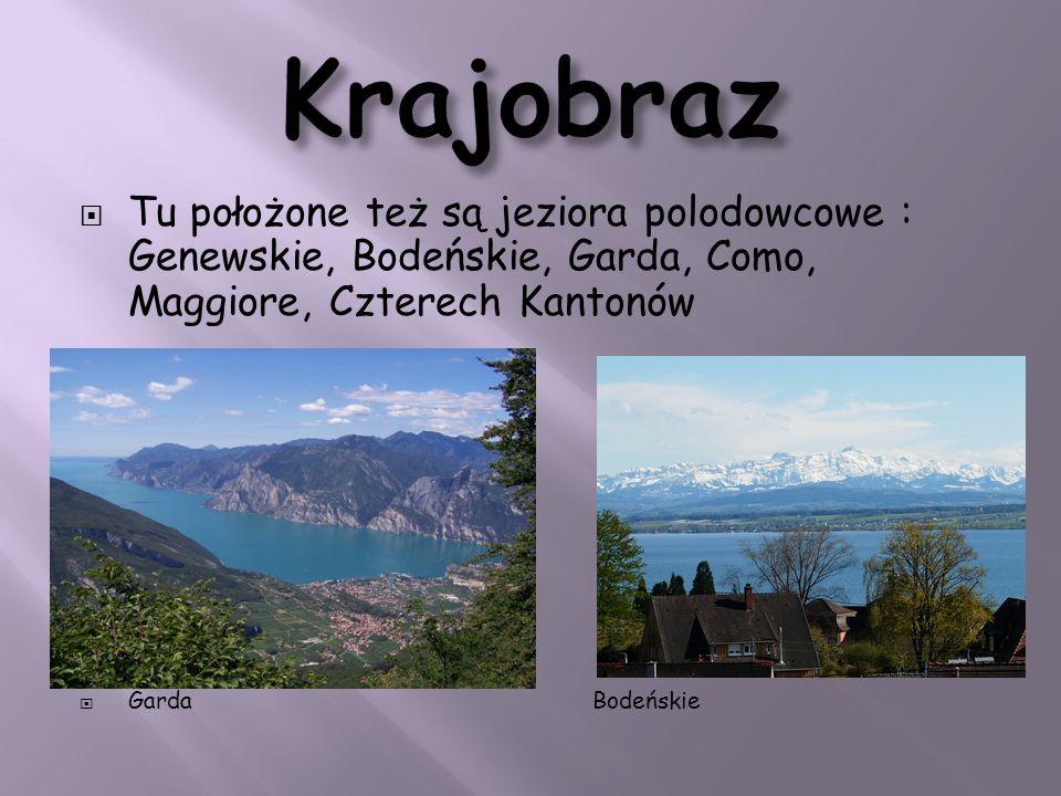 Krajobraz Tu położone też są jeziora polodowcowe : Genewskie, Bodeńskie, Garda, Como, Maggiore, Czterech Kantonów.