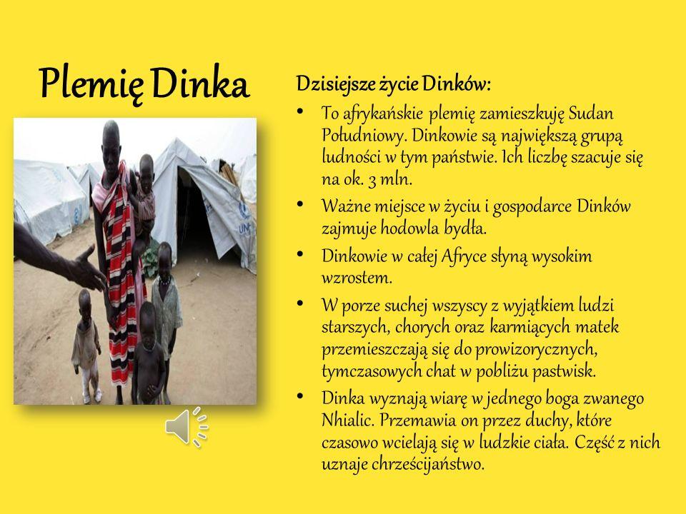 Plemię Dinka Dzisiejsze życie Dinków: