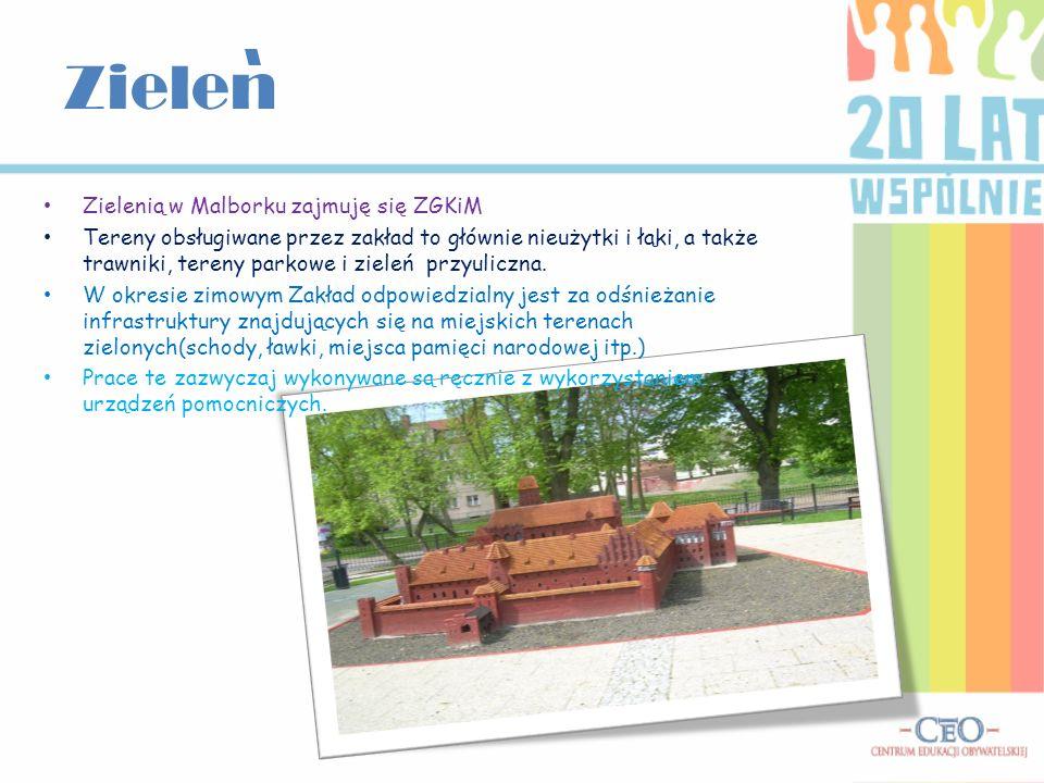 Zielen Zielenią w Malborku zajmuję się ZGKiM