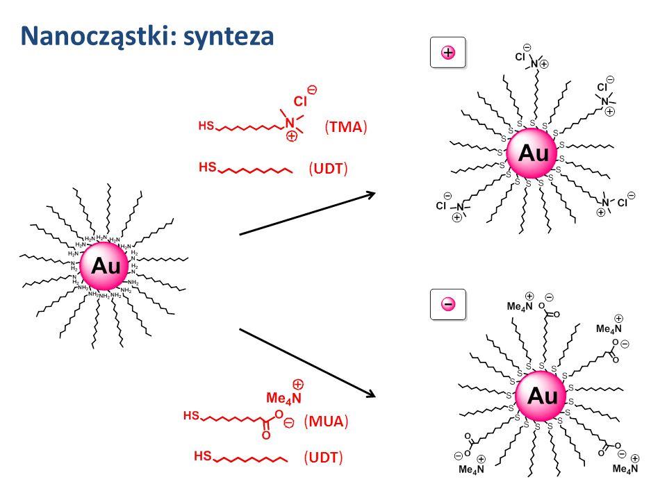 Nanocząstki: synteza (TMA) (UDT) (MUA) (UDT)