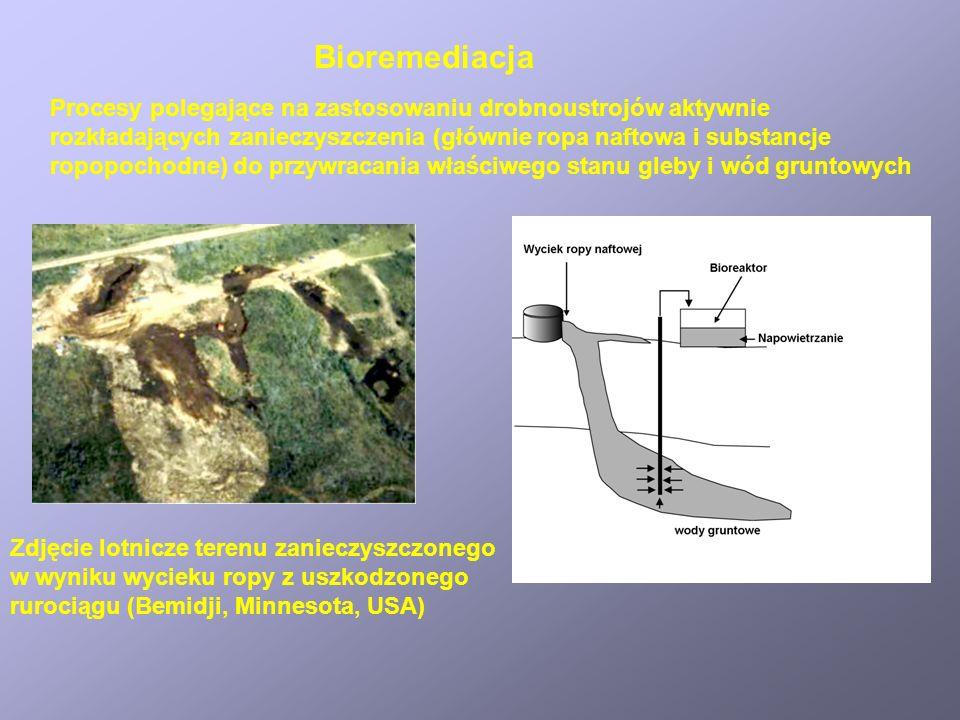 Bioremediacja Procesy polegające na zastosowaniu drobnoustrojów aktywnie. rozkładających zanieczyszczenia (głównie ropa naftowa i substancje.