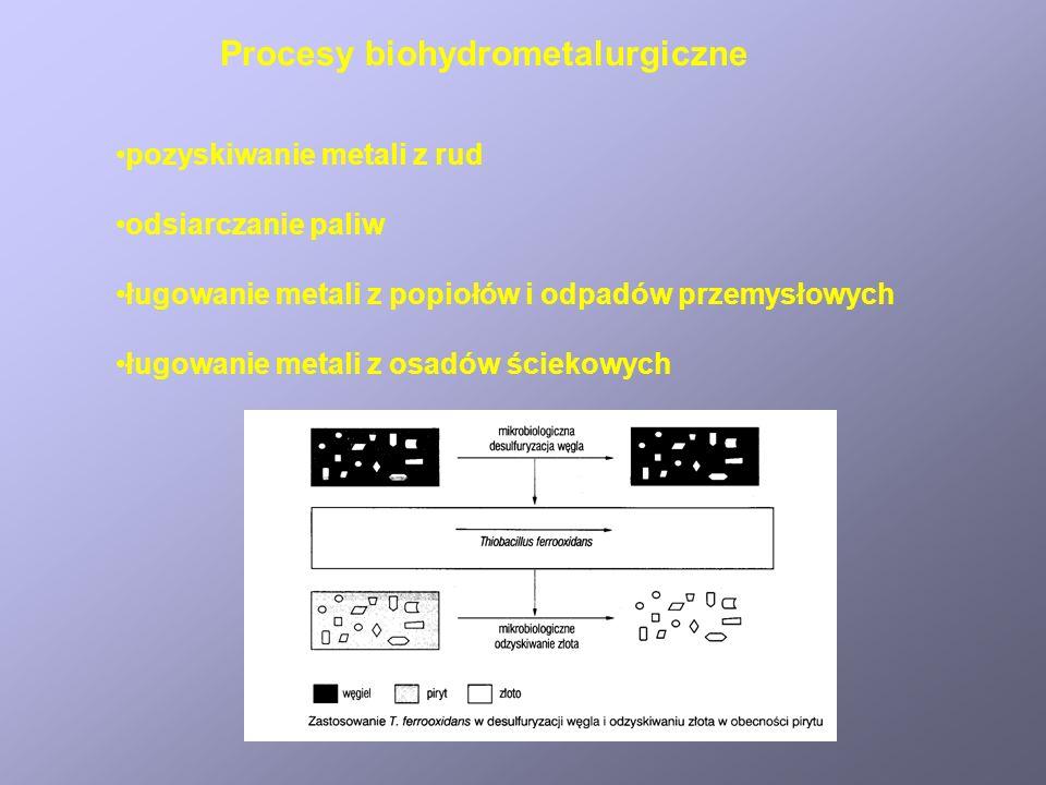 Procesy biohydrometalurgiczne