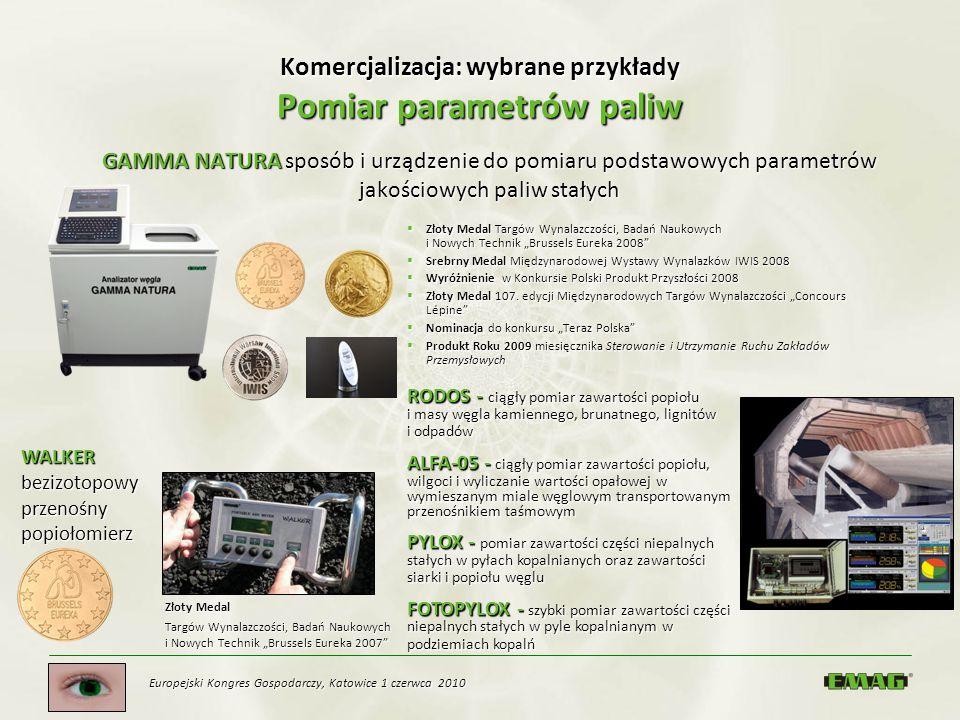 Komercjalizacja: wybrane przykłady Pomiar parametrów paliw